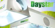 Banner_Daystar