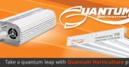 Banner_Quantum_0
